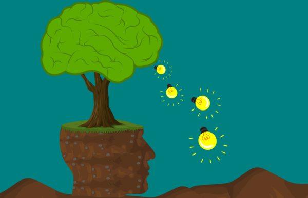 kontur głowy człowieka z wyrastającym z niej drzewem, świecące żarówki - metafora kratywności, innowacyjności